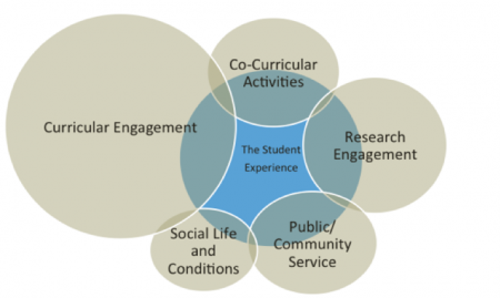Curricular engaggement; Co-curricular activities; Research engagement; Public service; Social lief and conditions